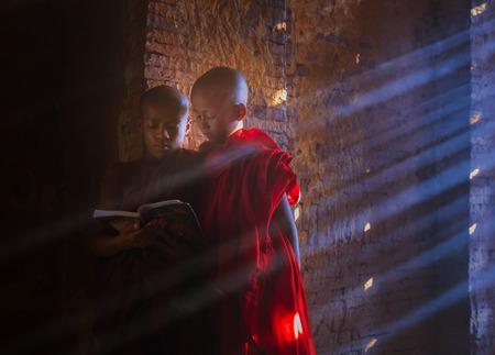 monastery: Young Myanmar Buddhist monk reading and studyin , in pagoda inside monastery, Myanmar.