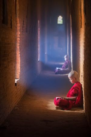 estudiando: Lectura monje budista joven y estudiar en, sentado en la pagoda en el interior del monasterio, Myanmar.
