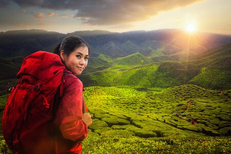 Asian lady backpack and travel the green tea plant in Cameron highlands with sunset and mountain, Cameron Highland, Malaysia, Asia