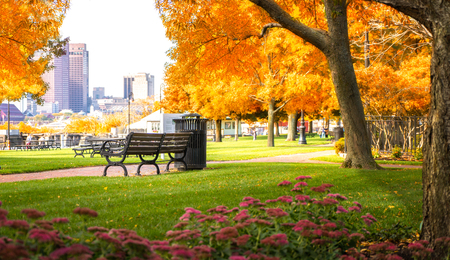 Autumn park in boston, USA, United stage of America