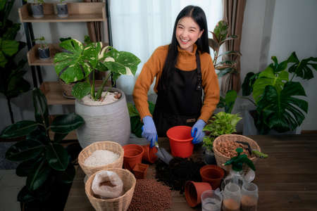 Asian woman plant a tree in her room in her condominium, this image can use for hobby, lifestyle, relax, holiday and decor concept Imagens