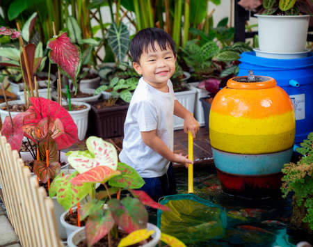 Asian boy play in koi pond, this image can use for education, play and garden concept