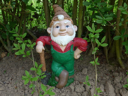 Garden gnome with shovel in front of a green hedge Фото со стока