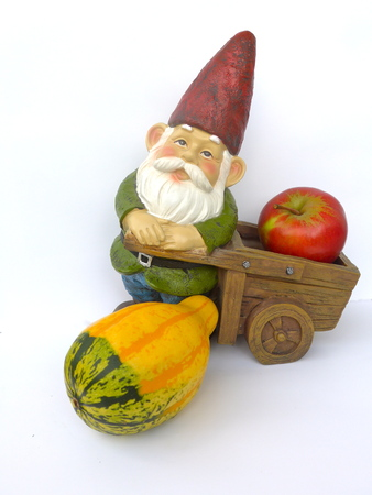 Garden dwarf with wheelbarrow, apple and pumpkin on isolated white background