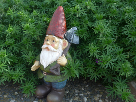 Garden dwarf with shovel in front of a green hedge