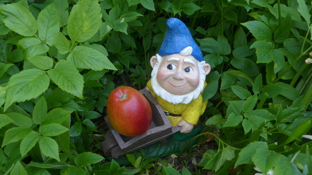 Garden dwarf with wheelbarrow and apple in a flower bed Stock fotó