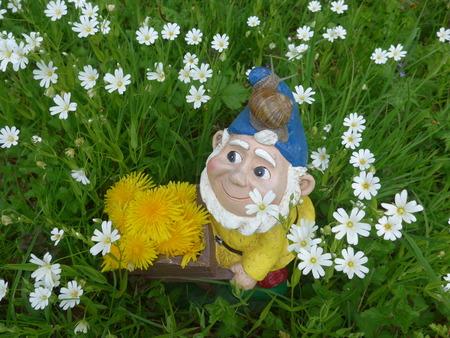 Garden dwarf on a flower meadow with dandelions Stock Photo