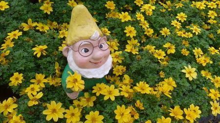 Garden dwarf in a flower bed