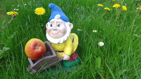 Garden dwarf with wheelbarrow and apple (not protected by copyright) Stock fotó