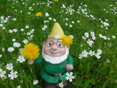 Garden dwarf on a flower meadow (not protected by copyright) Stock fotó