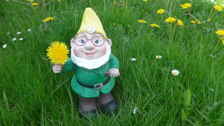 Garden dwarf on a green meadow (not protected by copyright)