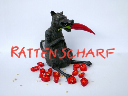 Black rat with red chili, isolated on white background