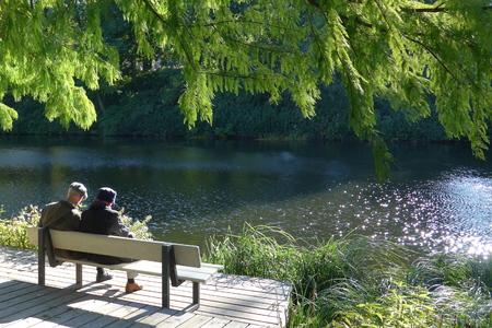 Coppie pensionate senior che si siedono su un banco nel parco. Si stanno godendo il silenzio, la bella viwe e il primo caldo giorno di primavera