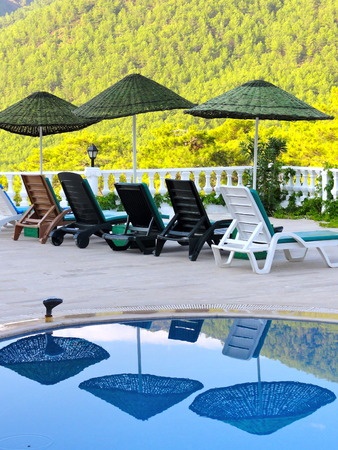Parasols and sunbeds are reflected on the water of a swimming pool. View of a hill with blooming mimosa trees.