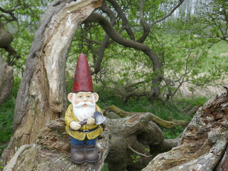 Garden gnome with red hat, yellow jacket, brown boots. He has an ax in his hand and stands on the withered branch of an old tree trunk