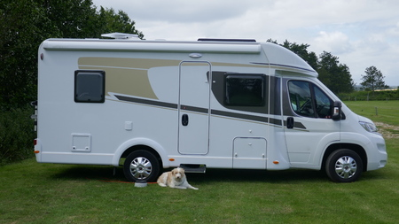 Holiday with camper and dog. Mobile home parked in a meadow, guarded by a dog
