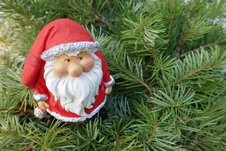 Santa Claus in the fir forest. A cute little gnome in Santa Claus costume hiding in the pine forest. (Not copyrighted)