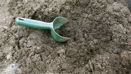 Small green garden hand scoops in the soil. Close-up
