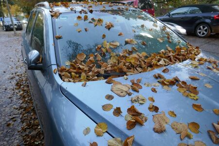 Wet brown autumn leaves on the bonnet clog the vents of a car parked on the roadside.
