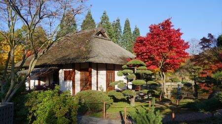 Autumn mood. The Japanese Garden in the beautiful park Planten un Blomen, in the middle of the city.