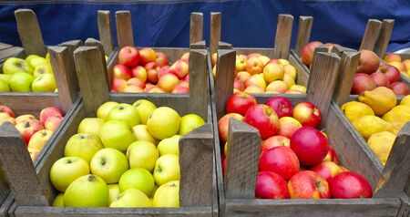 Fresh red and green organic apples in eco-friendly wooden crates. Ready for sale in the market.