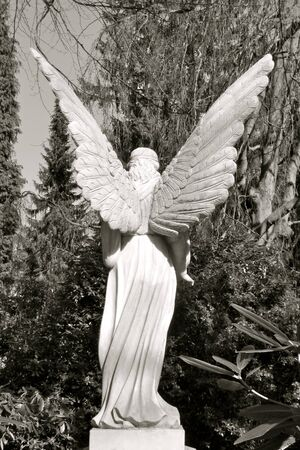 Sculpture of an Guardian Angel with large wings. Rear view. Beautiful old tombstone made of white marble. Seen in Hamburg Ohlsdorf, Germany, in the largest park cemetery in the world.