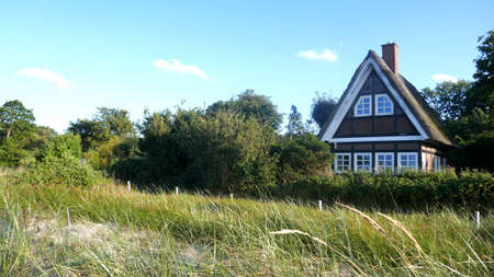 Small cottage with thatched roof between rose hedges and dunes by the sea