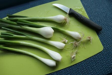 Fresh green and white spring onions. Healthy nutrition from the organic market