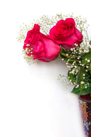 Beautiful red roses with gypsophila flowers on a white background. Bouquet for your favorite Stock Photo