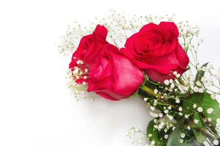 Beautiful red roses with gypsophila flowers on a white background. Bouquet for your favorite.