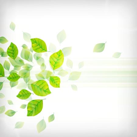 Fondo Verde Fresco Ilustración de vector