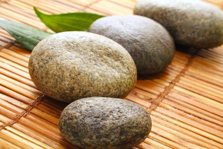 Stepping white stones against a background of bamboo  photo