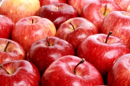 Veel rode rijpe appel met daling Stockfoto