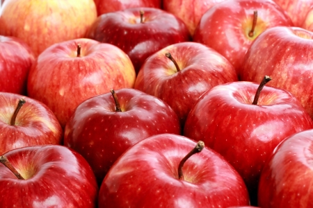 Lots of red ripe apple with drop