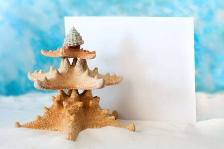 Kerstboom van zeesterren Stockfoto