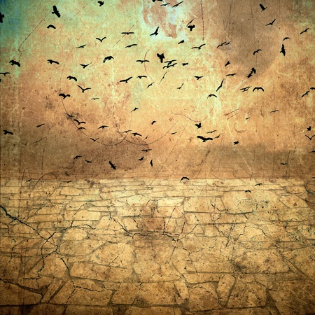 droughts: ground cracked, birds in the sky