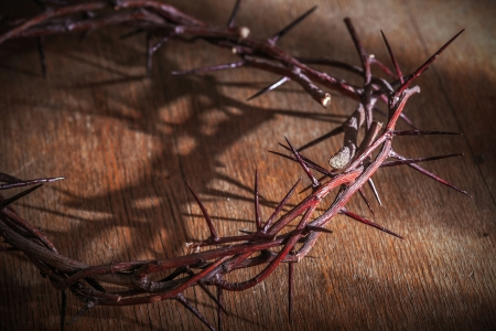 thorns  sharp: This is a crown of thorns on the Bible Stock Photo