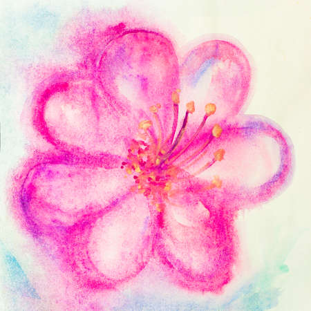 Beautiful Pink flower, Watercolor painting Stock Photo - 23043475