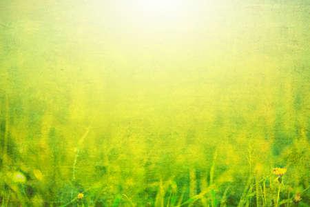 Foto van gras met zonlicht
