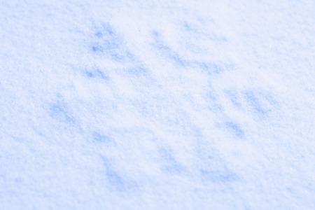 Photo blue snow and snowflakes Reklamní fotografie