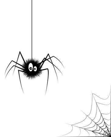 crawly: vector illustration of black spider Illustration