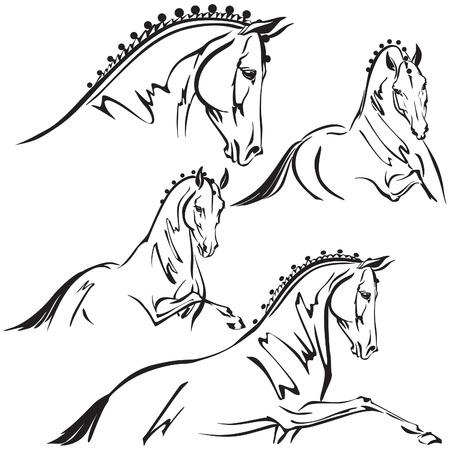 Dressage horses for trailer design Vector
