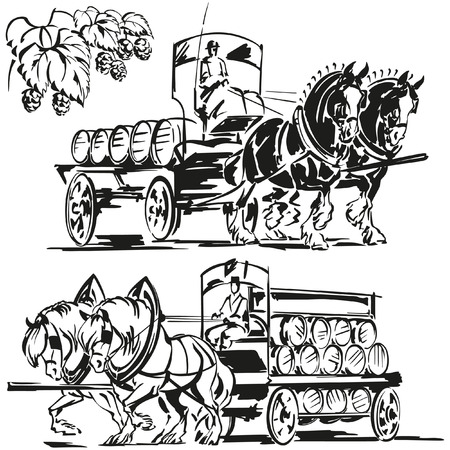shire horse: Two beer wagons and a hop branch