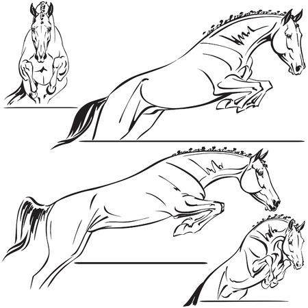 caballo saltando: Caballos de salto para el diseño del remolque