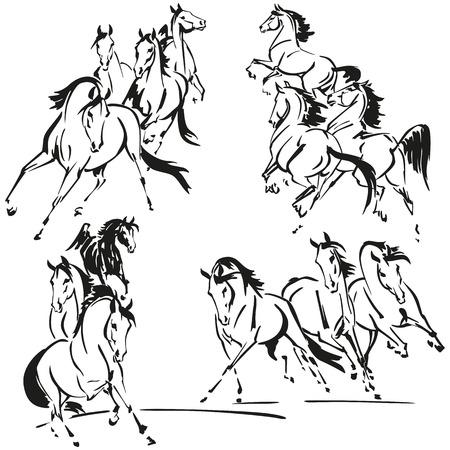 Groepen paarden