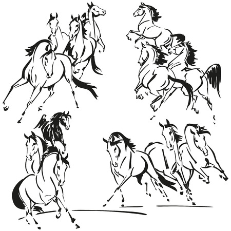 Groups of horses Illustration