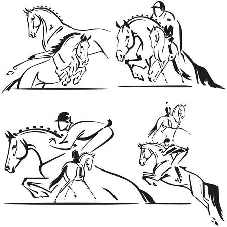 horse: Salto y doma