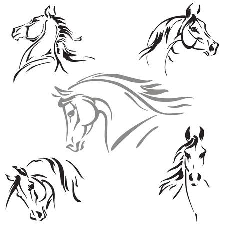 dessin noir et blanc: Cinq têtes de chevaux