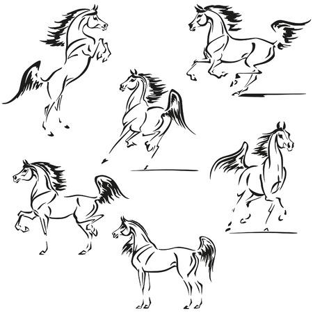 dessin noir et blanc: Silhouettes simplifiées de chevaux arabes. Illustration