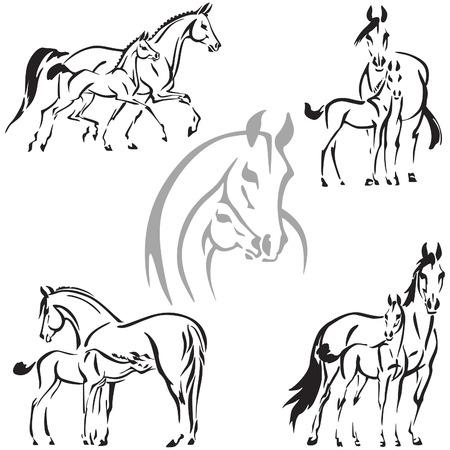 Égua e potro temas Ilustração